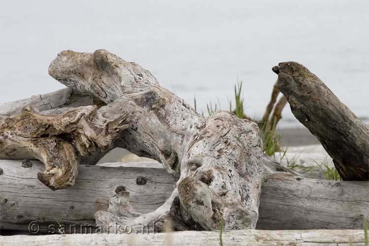 Dit drijfhout ligt al even op het strand van Homer in Alaska   Homer