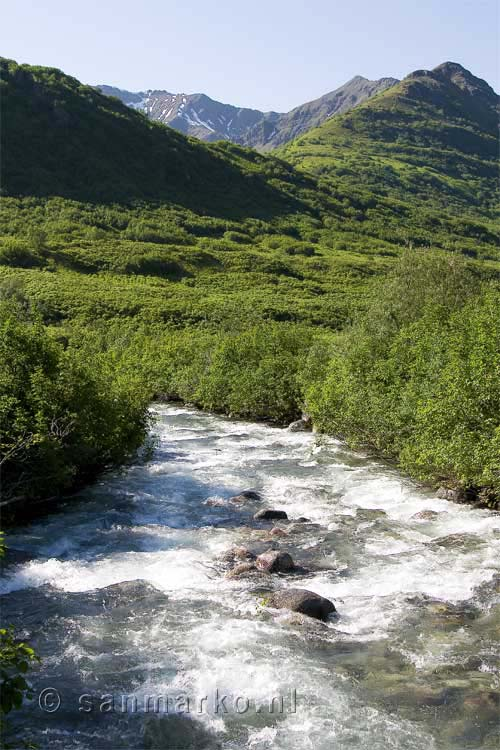 Archangel Creek bij Hatcher Pass in Alaska