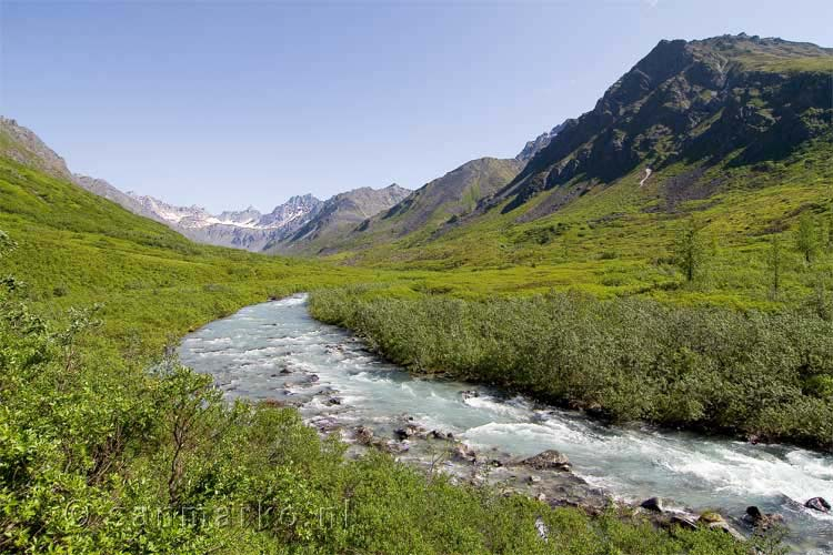 Little Susitna River bij Hatcher Pass in Alaska