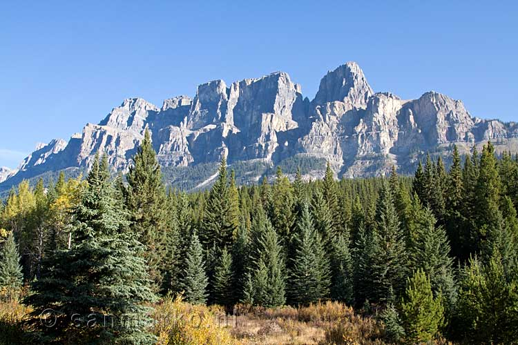 Castle Mountain aan de Bow Valley Parkway bij Banff