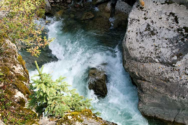 Nog een mooie waterval in Maligne Canyon in Jasper National Park