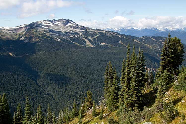 Whistler Mountain gezien vanaf de Blackcomb Mountain