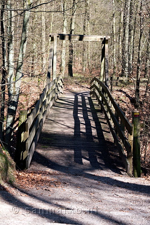 Brug over de Holle Weg in het bos in de Veluwezoom